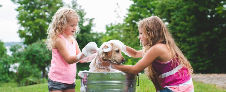Two sisters earning allowance by washing the family dog